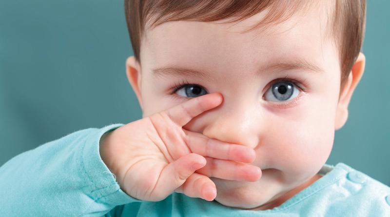 Hábito de limpar o nariz diariamente previne gripes e resfriados